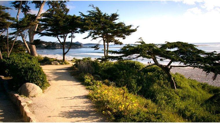 Path Along the Pacific Coastline