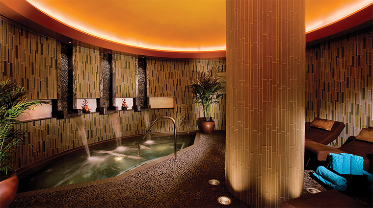 La Rive Spa Relaxation Lounge with Healing Waters
