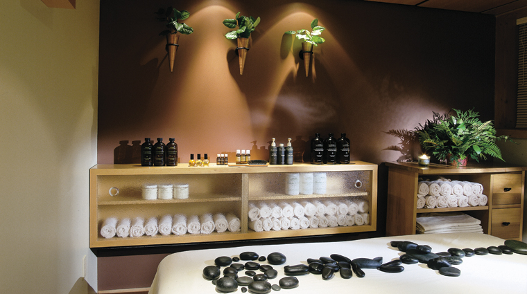 Ancient Cedars Spa Treatment Room