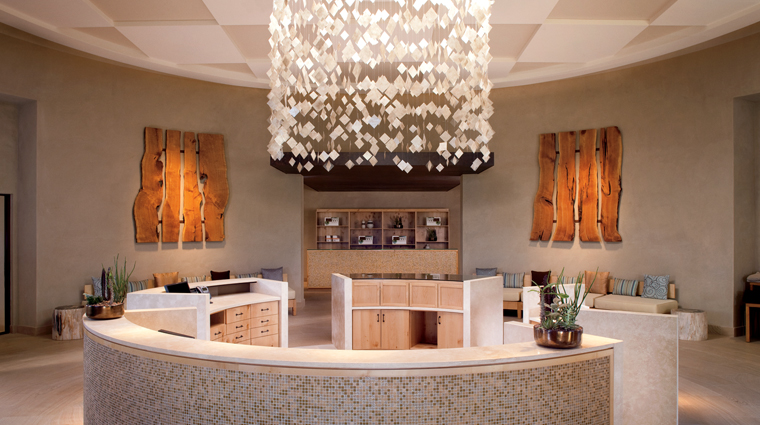 The Spa at The Ritz-Carlton, Dove Mountain Reception