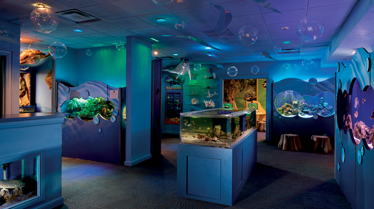 The Ritz-Carlton, Naples Natures Wonders Center
