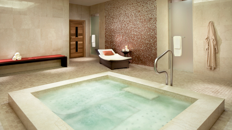 The Ritz-Carlton Spa, Toronto Vitality Pool