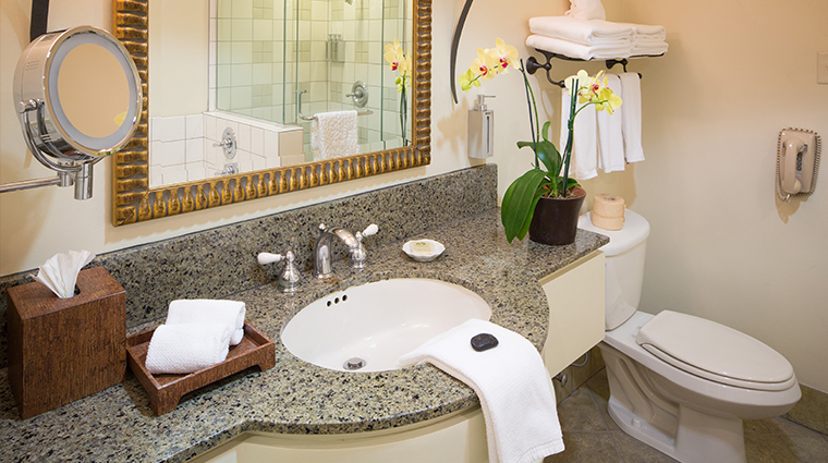 Tradewinds Carmel Guest Bathroom