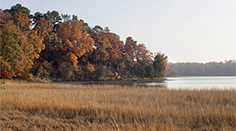 Colonial Parkway in Autumn