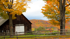 Autumn in Southern Vermont