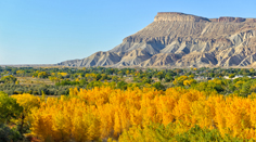 Grand Junction in Autumn