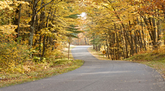 Country Road in Northwoods
