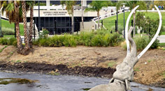 La Brea Tar Pits at Page Museum