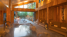The Cove Indoor Outdoor Immersion Pools
