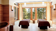 The Ritz-Carlton Spa, Lake Tahoe Couples Treatment Room