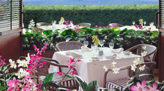 Orchids Dining