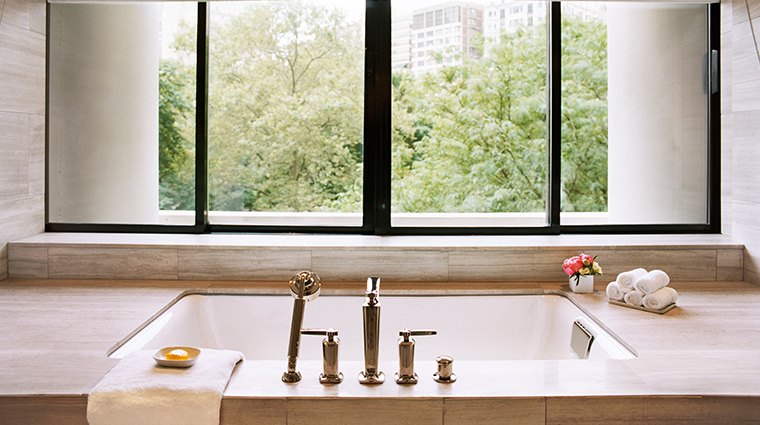 Park Suite Bathtub View
